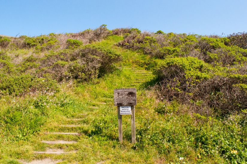Stairs leading up from beach in Trinidad California
