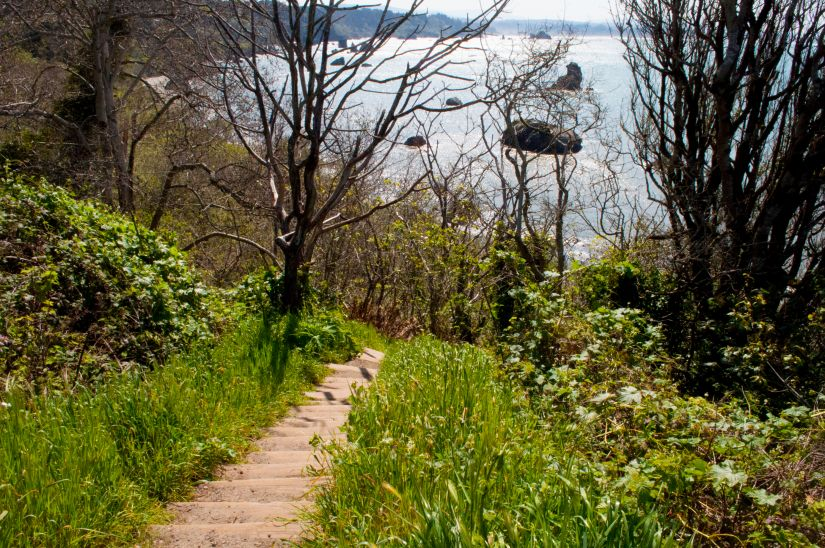 Stairs going down to the beach Trinidad California