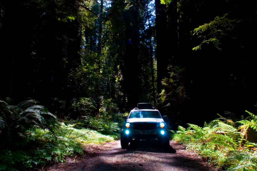 Wk1 Jeep Offroading in Red Woods Grand cherokee